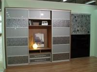 Шкаф-купе с пленочным декором и вставками пластика