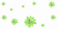 Цветочный Фреш MDF0864003G